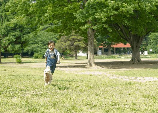 公園で遊ぶ子供と犬