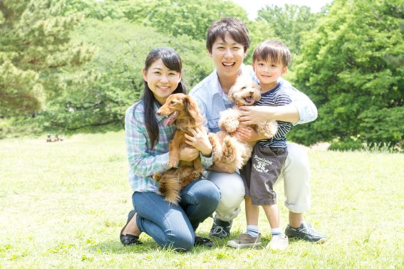 家族で犬と散歩