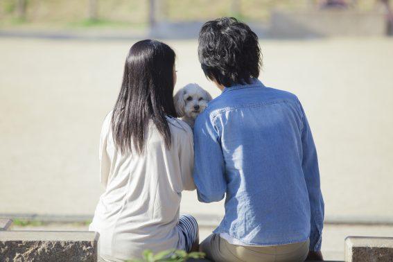 公園で佇む犬と人