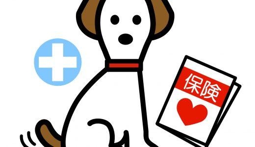 ペットシッターが加入している保険とは?依頼時何かあったら心配な方へ