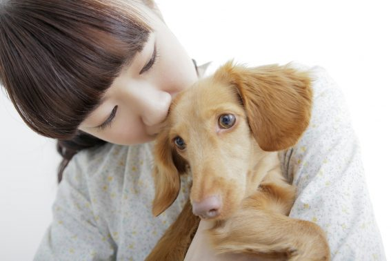 一人暮らしで留守番をするとの子犬と女性