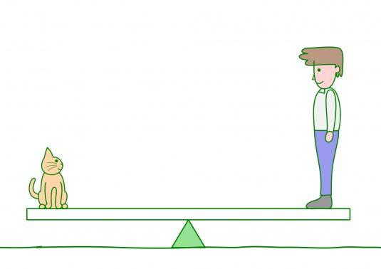 見つめあう人と猫