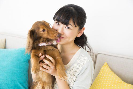 自宅で笑顔の飼い主と犬