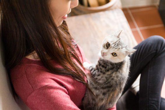 若い女性と猫