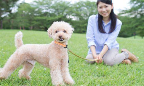くつろぐ女性と犬