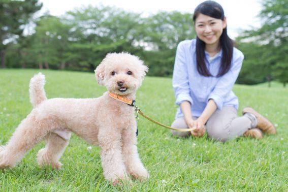 くつろぐ飼い主と犬