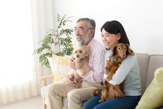 家族と愛犬で打ち合わせ