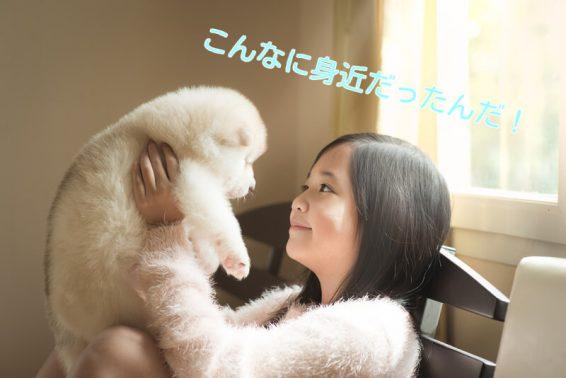 子犬を抱える子供