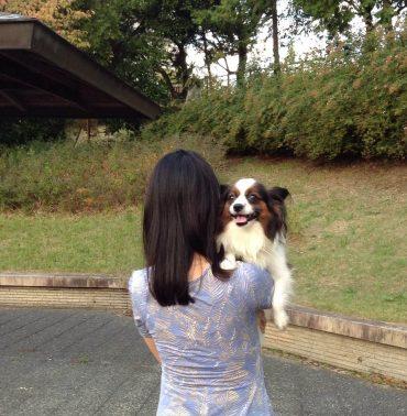 犬と女性シッター